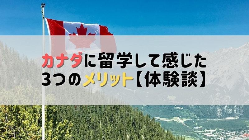 雄大な自然の中に立つカナダの国旗