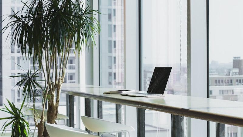 窓際のデスクの上に置かれたノートパソコンと観葉植物